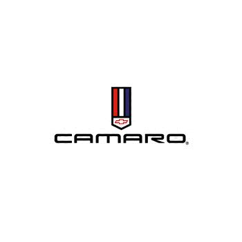 Camaro Convertible Hydraulic Cylinder Rebuild & Upgrade Service