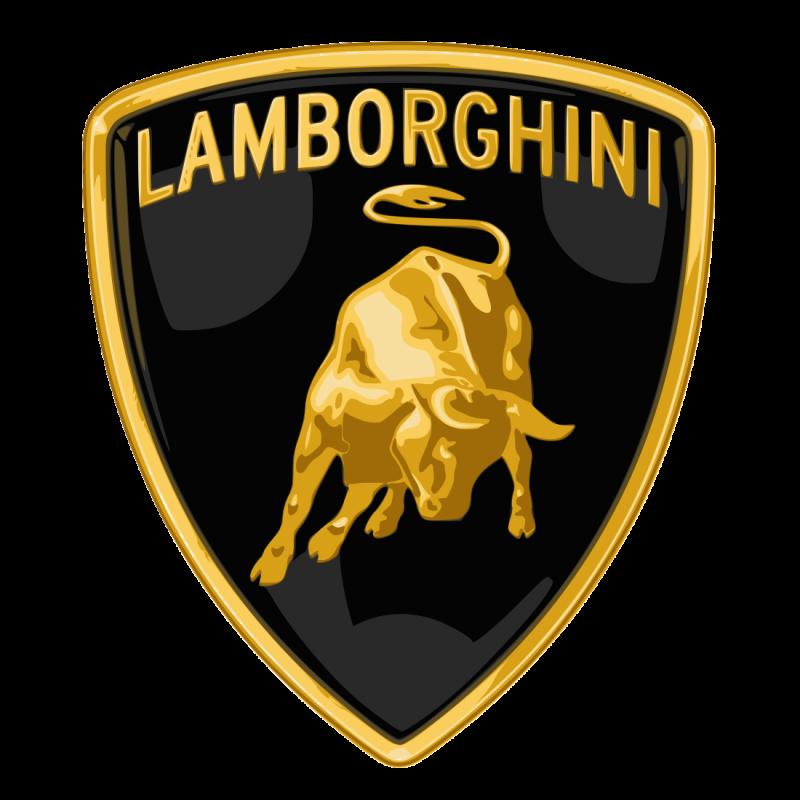 Rebuild/Upgrade Service for Lamborghini Gallardo Hydraulic Valve Blo