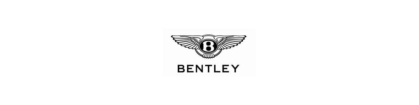 Bentley Convertible Top Hydraulic Cylinder Rebuild/Upgrade Service