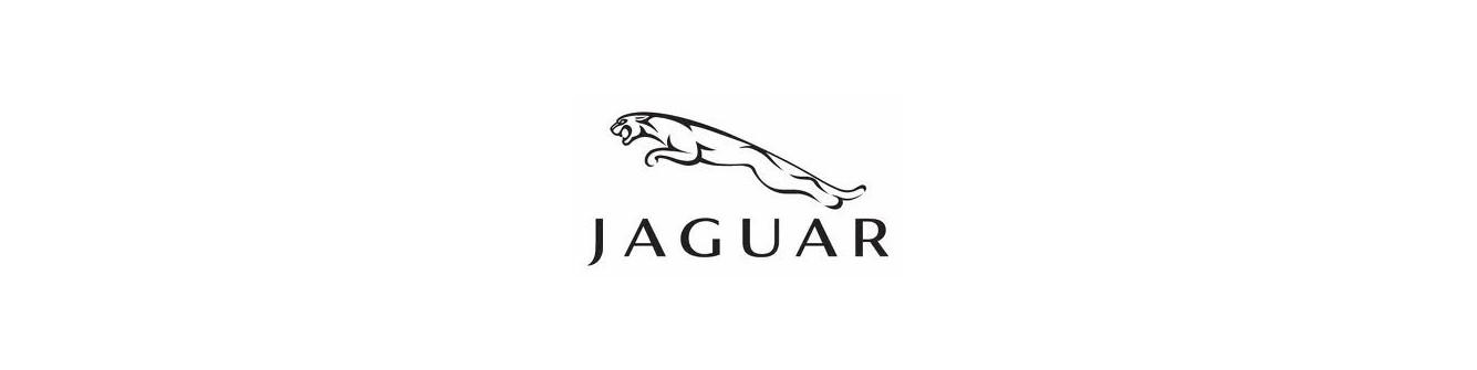 Jaguar Convertible Top Hydraulic System Rebuild/Upgrade Service